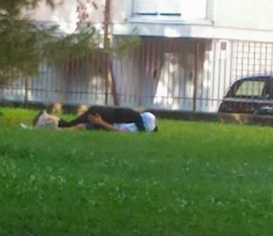 Sesso al parco, foto generica