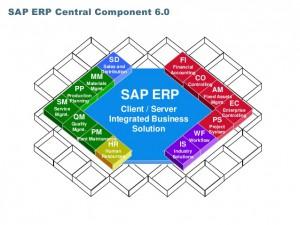 SAP ERP ECC6 BSS-IT
