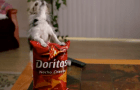 How to create your own Super Bowl styled ad