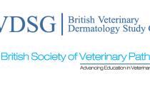 BVDSG/BSVP Meeting – 'Skin Deep' – Manchester