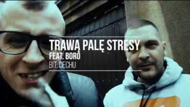 Photo of TPS – Trawą Palę Stresy feat. Boro