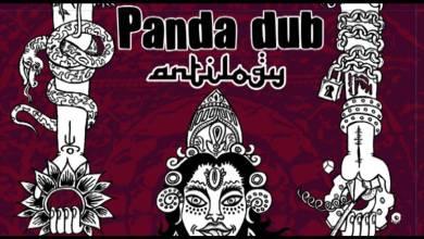 Photo of 04 – Panda Dub – Antilogy – I'm in the mood feat Pilgrim & Shantifa