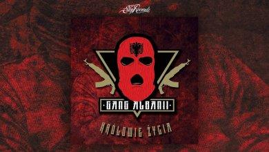 Photo of Gang Albanii – Królowie życia [cały album]