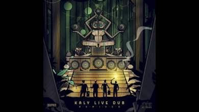 Photo of Tetra Hydro K remix Kaly Live Dub – Hard Man