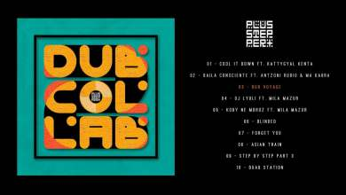 Photo of PlusStepper – DubCollab 2 [Full Album]