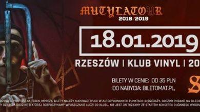 Photo of Słoń • Mutylator • Rzeszów