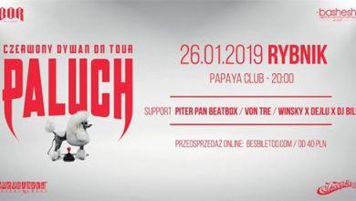 Photo of Paluch x Czerwony Dywan / Rybnik