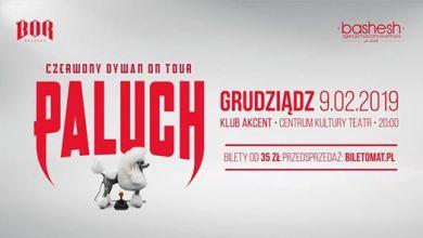 Photo of Paluch • Czerwony Dywan • Grudziądz SOLD OUT