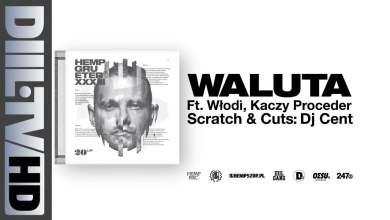 Photo of Hemp Gru – Waluta ft. Kaczy, Włodi (prod. Szwed SWD, scratch/cuts DJ Cent) [DIIL.TV]
