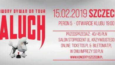Photo of Paluch X Czerwony Dywan | Szczecin 15.02.2019