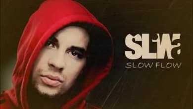 Photo of ŚLIWA – Slow Flow