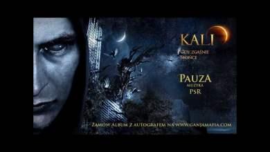 Photo of 06. Kali – Pauza (prod. PSR)