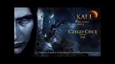 Photo of 13. Kali – Czego chcę (prod. PSR)