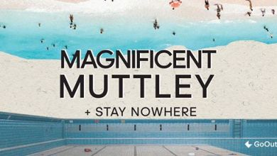 Photo of Magnificent Muttley // Stay Nowhere // Pogłos