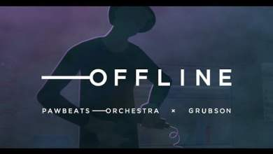 Photo of Pawbeats Orchestra ft. GrubSon – OFFLINE (Official Video)