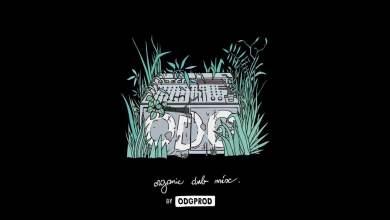Photo of Organic Dub Mix by ODGPROD