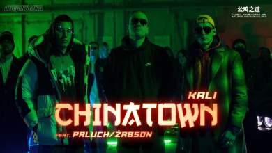 Photo of Kali – CHINATOWN feat Paluch/Żabson
