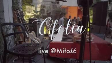 Photo of Obejrzyj Ofelia live @Miłość
