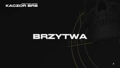 Photo of Kaczor BRS – Brzytwa