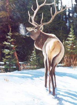 """Lone Elk"" Oil 18""x24"""