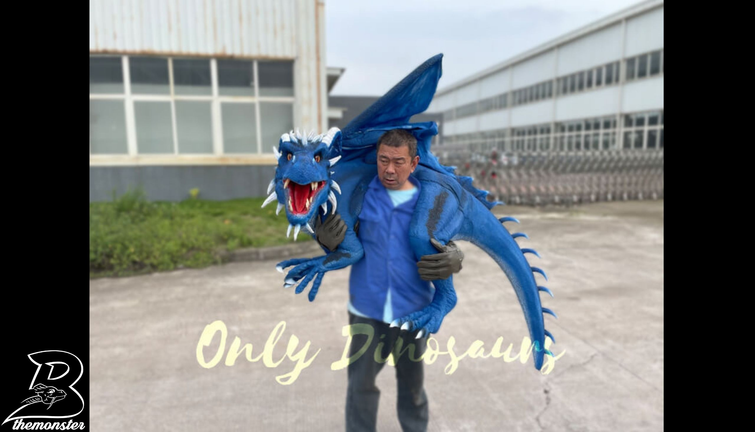 Vivid Flying Dragon Shoulder Puppet in vendita sul Bthemonster.com