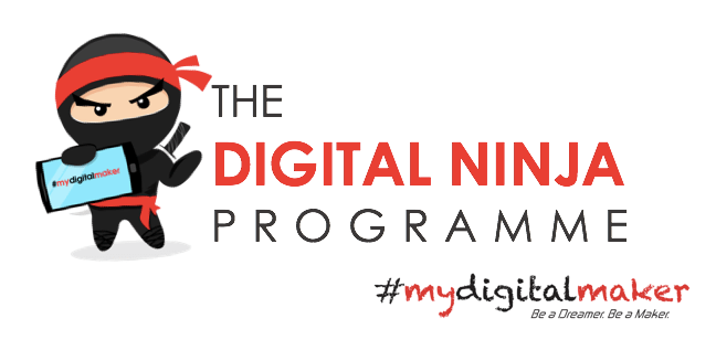 Digital Ninja Programme