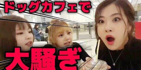 【動画】ジスはどこへ!?ドッグカフェで大騒ぎ!!【BLACKPINK日本語字幕】