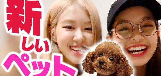 【動画】リサ、めちゃかわいいペット飼い始めました。【BLACKPINK日本語字幕】