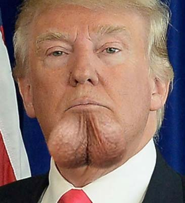 Image result for trump insane