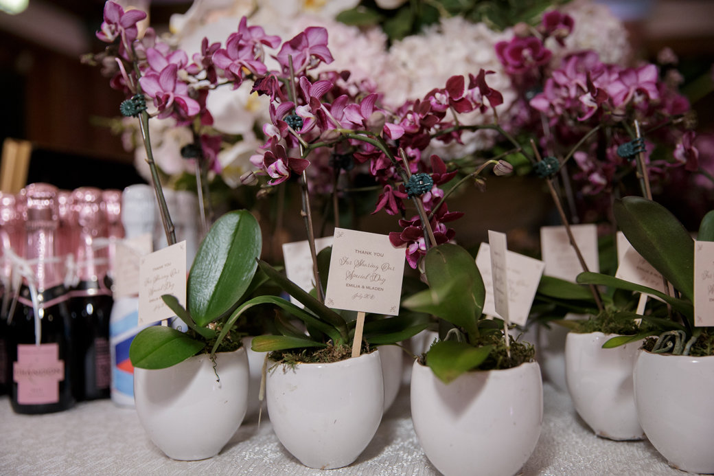 Mini Orchids Wedding Favors   Cafe Brauer   Chicago Wedding   Bubbly Moments
