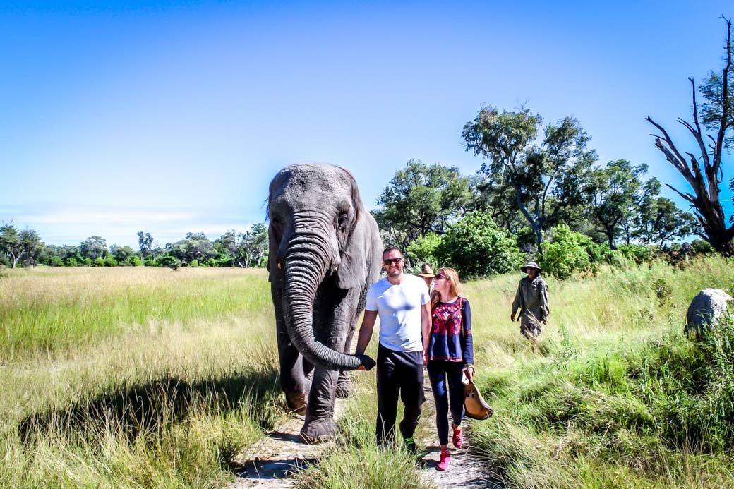 Botswana Okavango Delta Safari | Sanctuary Baines' Camp | Travel | Africa | Safari | Bubbly Moments
