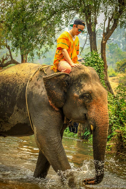 Riding the elephant through a shallow river