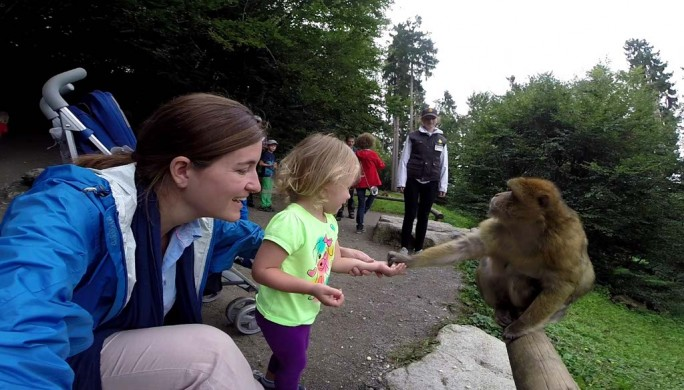 Feeding Monkeys in Germany