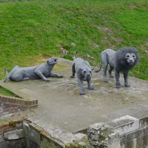 Three grey lifelike sculptures, a lion and two lionesses, looking at you