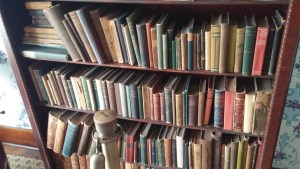 Shelves of Dunbar's books in the loafing holt.