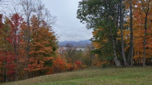 Autumn in Chillicothe, Ohio (author's photo).