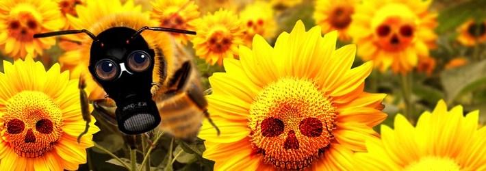 Bienenkiller verbieten!