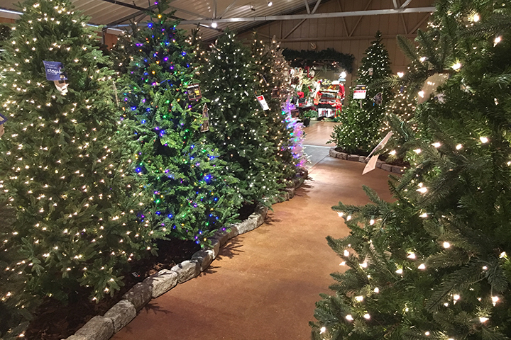 40% OFF Artificial Christmas Trees!