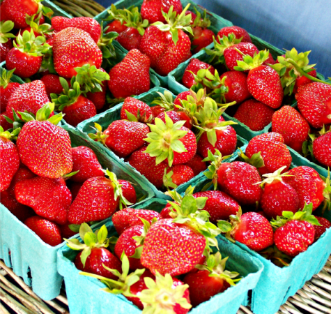 Blooming Glen Farm strawberries, photo credit Lynne Goldman