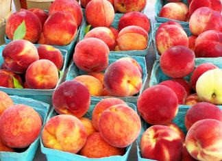 Peaches; photo credit Lynne Goldman