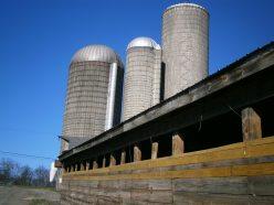 Fulper Farm silos