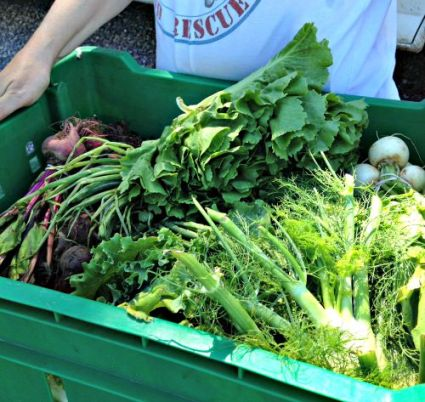 Produce from Roots to River Farm; photo credit Lynne Goldman