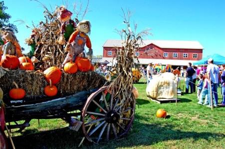 Fall Run, The Market at DelVal