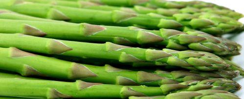 PageLines- asparagusbannercrop.jpg