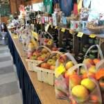 Apples, Manoff Market Gardens