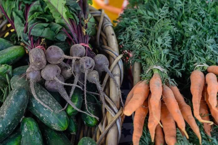 Lower Makefield Farmers Market