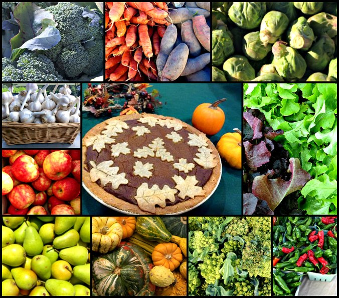 Nov 16 2017 farmers market collage; photo credit Lynne Goldman