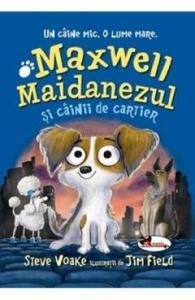 cărți copii 9-10 ani