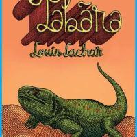 Tabăra, de Louis Sachar, o poveste originală care nu trebuie ratată
