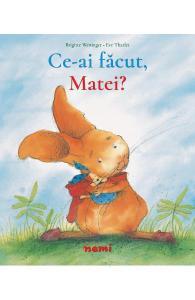 carti pentru copii cu griji-Ce-ai făcut Matei!